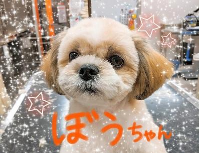 PicsArt_02-08-10.12.52.jpg