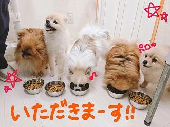 PicsArt_07-10-12.25.58.jpg